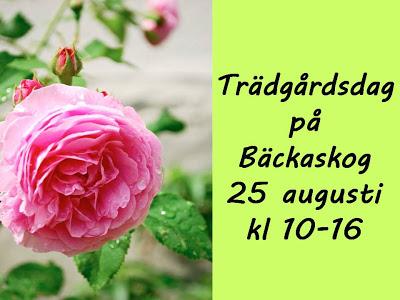 backaskog-2013
