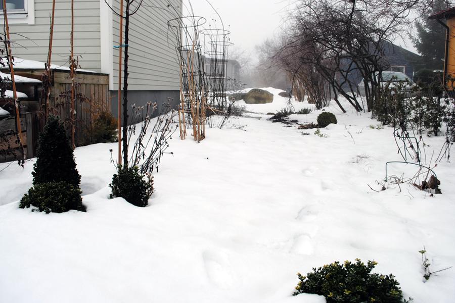 Februari - stengången vid husets långsida